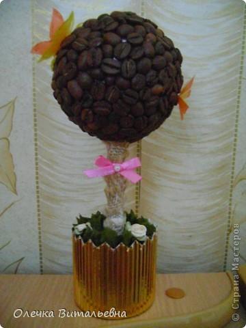 Очень уж мне понравились кофейные деревья, увиденные здесь в СМ. Я решила, что обязательно сделаю такое в подарок племяннице... И вот такое ароматное деревце у меня получилось.  фото 1