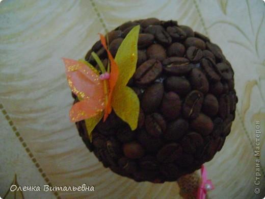 Очень уж мне понравились кофейные деревья, увиденные здесь в СМ. Я решила, что обязательно сделаю такое в подарок племяннице... И вот такое ароматное деревце у меня получилось.  фото 2