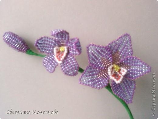 Орхидея из бисера | Страна