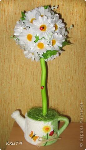 вот сбылась еще  одна моя мечта - вырастить ромашковое дерево. В основе кроны наш любимый бумажный шар, в горшке - алебастр. Цветочки сажала на горячий клей.