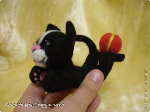 Кот- циркач! фото 2