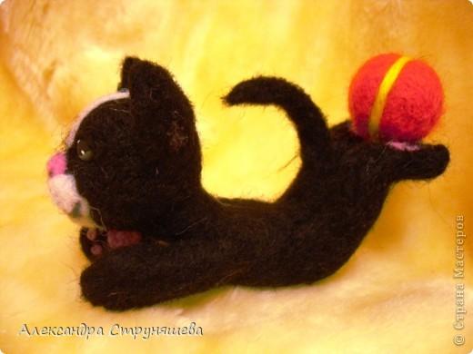 Кот- циркач! фото 4