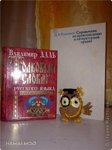 За основу взята вот эта совушка: http://www.liveinternet.ru/users/natalyaowl/post129296480/ Но свою решила, конечно, связать по-своему. фото 1
