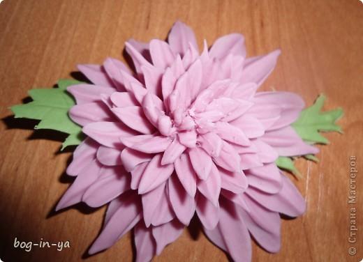 Вот такая получилась у меня розовая хризантема. И что совершенно  неожиданно для меня - цвет очень натуральный. фото 2