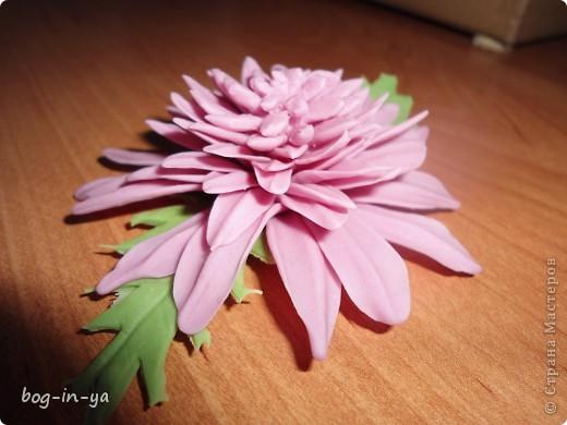 Вот такая получилась у меня розовая хризантема. И что совершенно  неожиданно для меня - цвет очень натуральный. фото 3