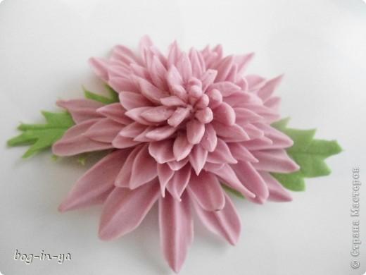 Вот такая получилась у меня розовая хризантема. И что совершенно  неожиданно для меня - цвет очень натуральный. фото 5