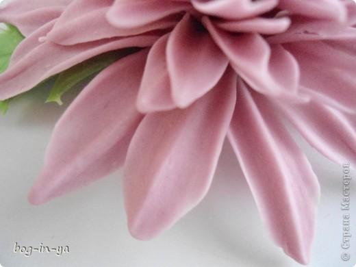 Вот такая получилась у меня розовая хризантема. И что совершенно  неожиданно для меня - цвет очень натуральный. фото 6