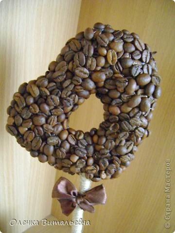 Пополнение моей кофейной плантации. фото 2