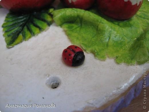 Вдогонку за моими фруктами поспели и овощи. Это ничего, что сначала у меня зреют дары осени а потом дары лета, у творческих людей иногда и не такое бывает... Не судите строго:))) фото 3
