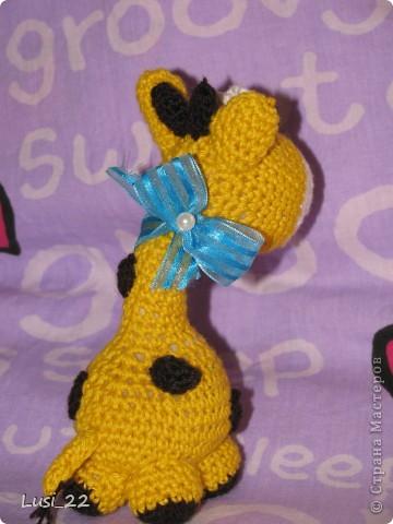 Очень понравился жирафчик у Жанны http://stranamasterov.ru/node/157654?c=favorite. Решила связать такую красотульку. фото 3