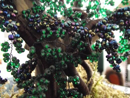 Мастер-класс Бисероплетение МК- Виноградная лоза Бисер Гипс Нитки Проволока фото 9.