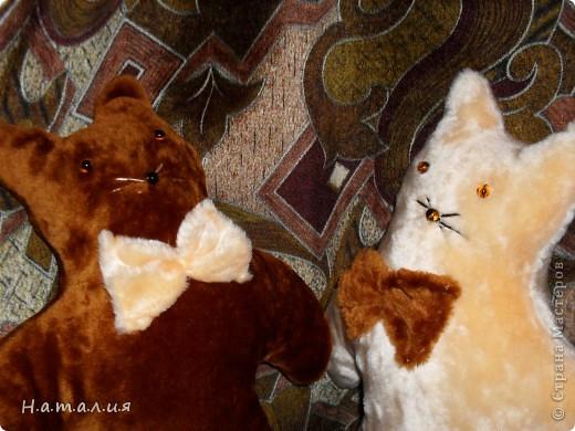 Котики- подушечки. фото 12
