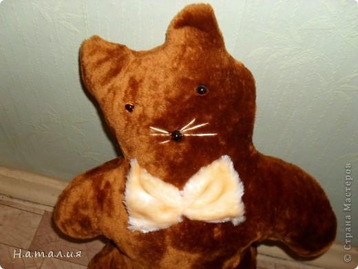 Котики- подушечки. фото 8
