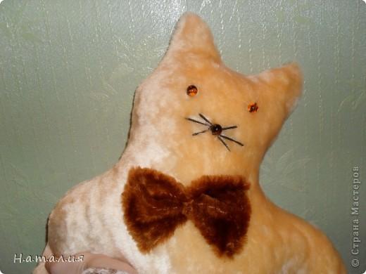 Котики- подушечки. фото 9
