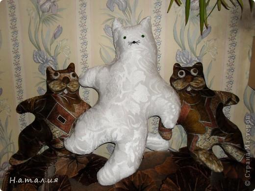 Котики- подушечки. фото 2