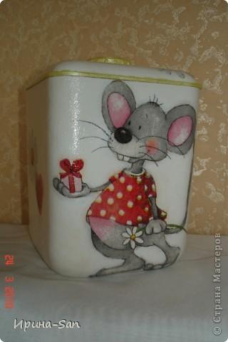 Мыша фото 2