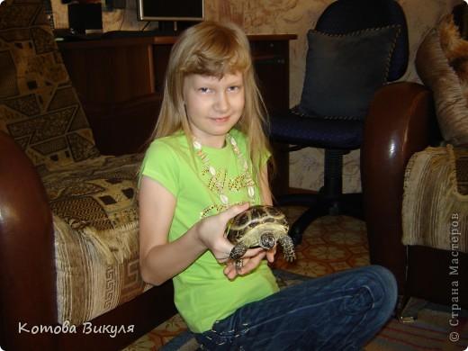 Красавица Манечка вся в одуванчиках. фото 13