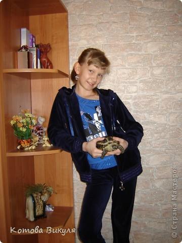 Красавица Манечка вся в одуванчиках. фото 14