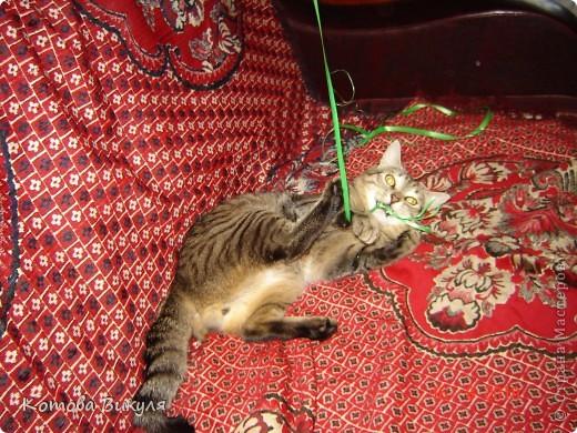 Красавица Манечка вся в одуванчиках. фото 17