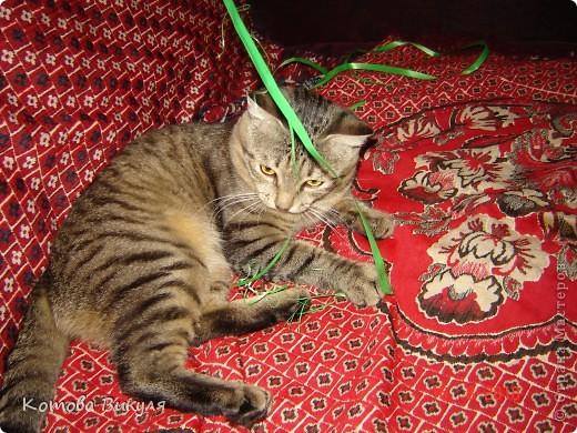 Красавица Манечка вся в одуванчиках. фото 16