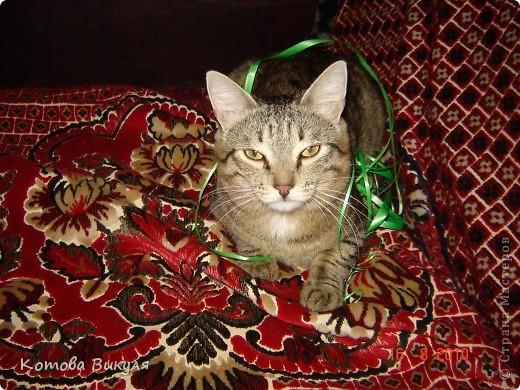 Красавица Манечка вся в одуванчиках. фото 18