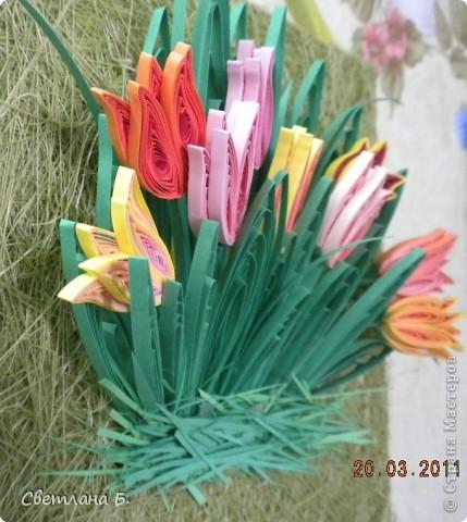 Первые цветы проклюнулись из-под снега и прошлогодней травы. фото 8
