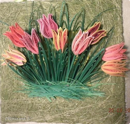 Первые цветы проклюнулись из-под снега и прошлогодней травы. фото 7