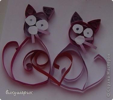 кошки в оКОШКАх фото 2