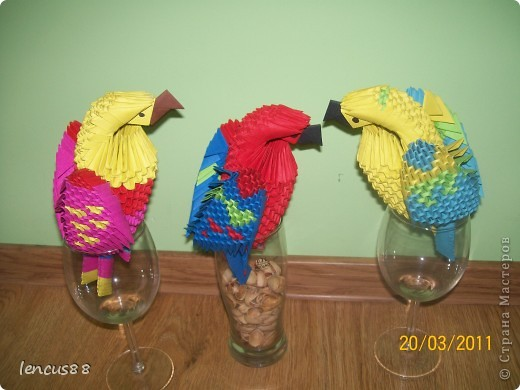 3 Papużki :) jak się podobają ??  фото 2