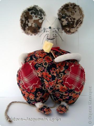 А в нашей кладовке мышка живет. Весь год она сыр из кладовки крадет.   Остались от сыра лишь дырки, да хвостик. И мышка теперь не заходит к нам в гости.   Истомина Наталья фото 1