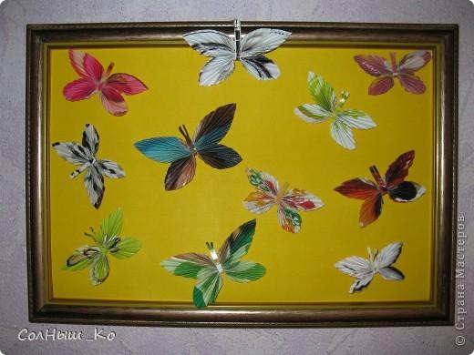 Ну люблю я бабочек,пусть даже не живых!!! фото 1