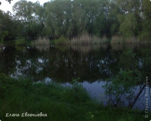 В осеннем лесу фото 6