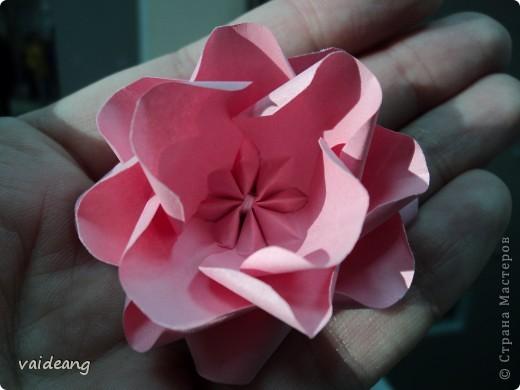 Увидела много яблонь в цвету в интернете и захотелось тоже,только белую не интересно делать,сделала  розовой .Для сохранения  весеннего   настроения. фото 5