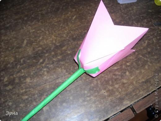 Эти тюльпаны сделаны для оформления,поэтому гигантские,из целого листа А4. Ссылка www.krokotak.com фото 10