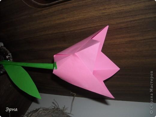 Эти тюльпаны сделаны для оформления,поэтому гигантские,из целого листа А4. Ссылка www.krokotak.com фото 12