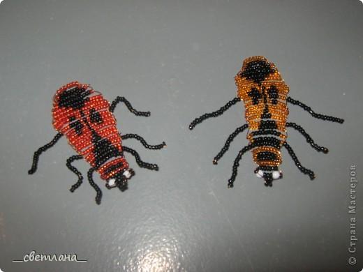 Бисероплетение (жуки) фото 2
