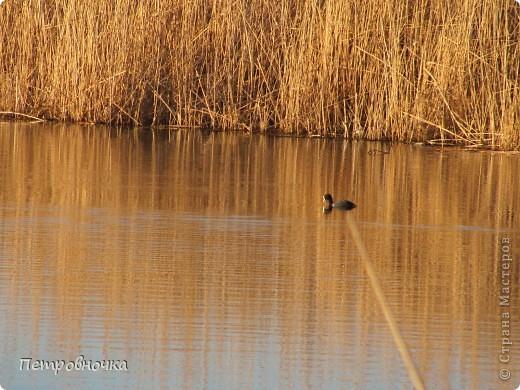Это чудо мы увидели на нашей речке Сосыке, летом мы сюда ездим на рыбалку, а зимой иногда приезжаем просто посмотреть. фото 2