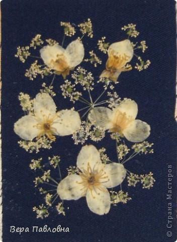 Открытка флористическая фото 3