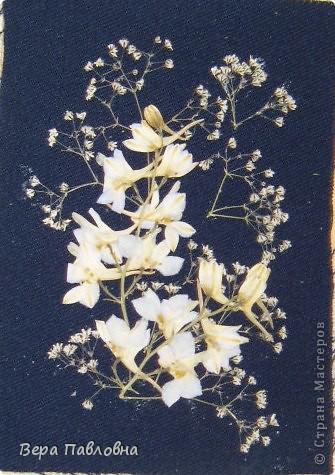 Открытка флористическая фото 2