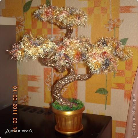 Вот такое цветет у меня на кухне веселенькое деревце!