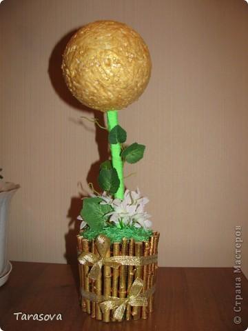 У кого то в блоге читала что кофейное деревцо к денюжкам в доме :), ну так или иначе хотелось просто попробовать сделать и опять на свое усмотрение. фото 2