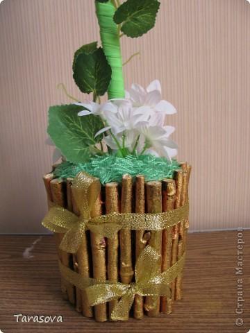 У кого то в блоге читала что кофейное деревцо к денюжкам в доме :), ну так или иначе хотелось просто попробовать сделать и опять на свое усмотрение. фото 3