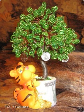 По  Фен шуй для привлечения богатства используется так называемое денежное дерево, которое не просто помогает, а в буквальном смысле притягивает к вам энергию денег. фото 2