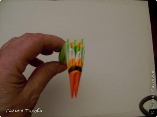 На создание такого павлина у меня пошло:1299 модулей: белых-347, оранжевых-337, зелёных-562, светло-зелёных-51, чёрных-1, красных-1. фото 50
