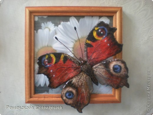 """Вот  такую бабочку я слепила из соленого теста и расписала гуашью. Только пришлось бабочку делать """"гигантских"""" размеров, чтобы более точно  повторить рисунок её крыльев. фото 1"""