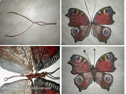 """Вот  такую бабочку я слепила из соленого теста и расписала гуашью. Только пришлось бабочку делать """"гигантских"""" размеров, чтобы более точно  повторить рисунок её крыльев. фото 3"""