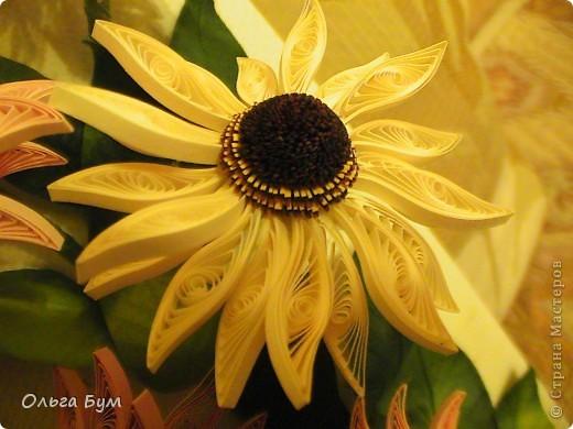 Эхинацеи! Люблю этот цветок в квиллинге - радостный и простой. фото 4