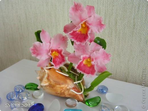Орхидей на сайте уже много, но я то же не удержалась и слепила из холодного фарфора мини орхидеи. фото 4