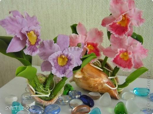 Орхидей на сайте уже много, но я то же не удержалась и слепила из холодного фарфора мини орхидеи. фото 6