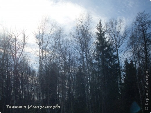 Какое небо голубое... фото 5